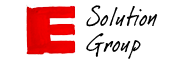 E Solution Group
